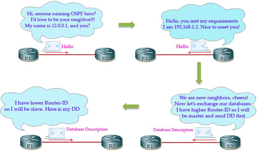 Pronalaženje suseda i razmena DBD paketa